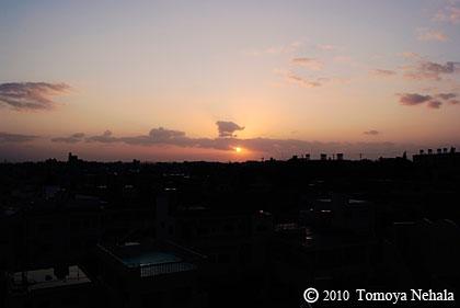 Morning glow 1.26