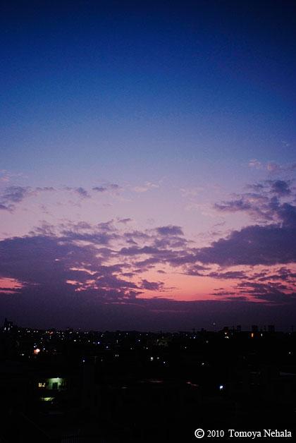 Morning glow 1.29