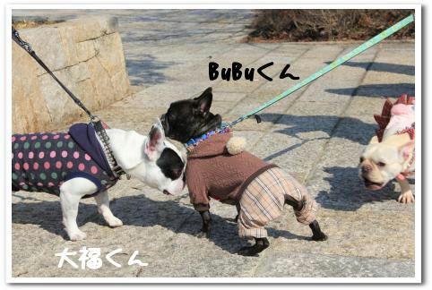 大福くん&BuBuくん