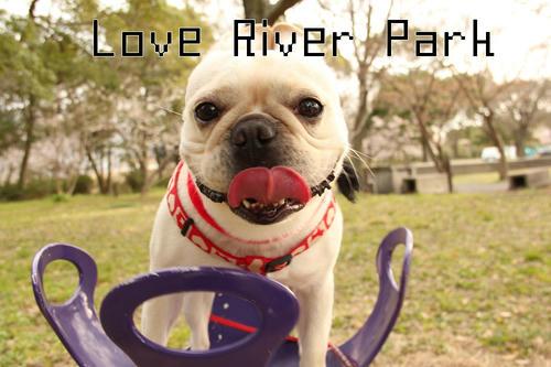 Love River Park