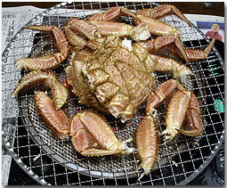 毛蟹 けがに 北海道 焼き蟹