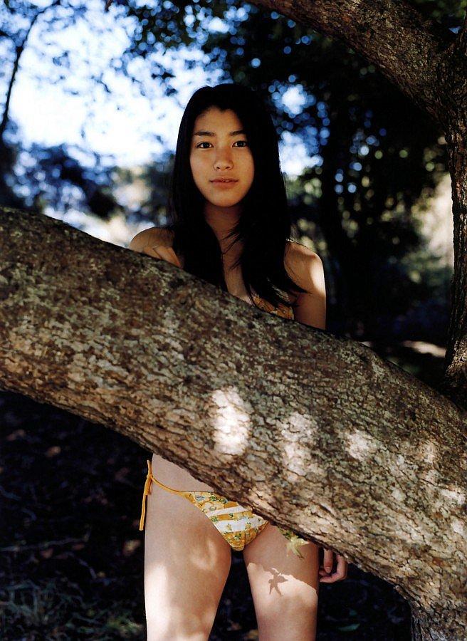 成海璃子の木