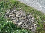 集めた石。