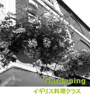 english5.jpg