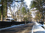 武家屋敷通りの雪化粧