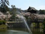 穏やかな吉香公園のひと時