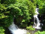 新緑に囲まれた竜頭ノ滝