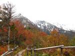 紅葉と雪化粧の大雪山連峰
