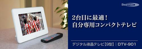DTV901.jpg