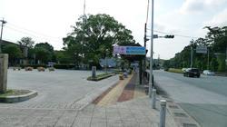 2011_08_09054.jpg