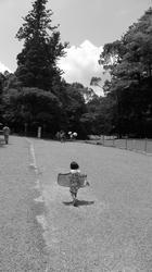 2011_08_09193.jpg