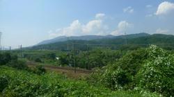 2011_08_10030.jpg