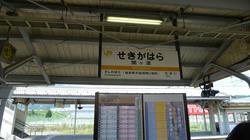 2011_08_10034.jpg