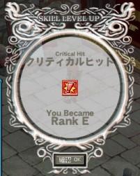クリティカルRANK E
