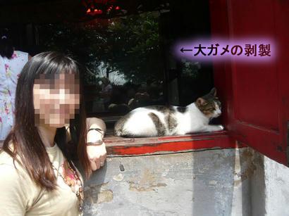 20110920_04.jpg