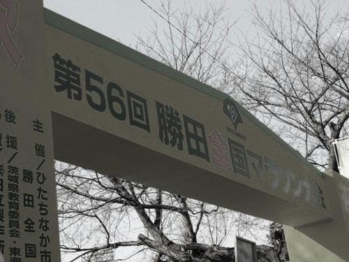 c1b5a026.JPG