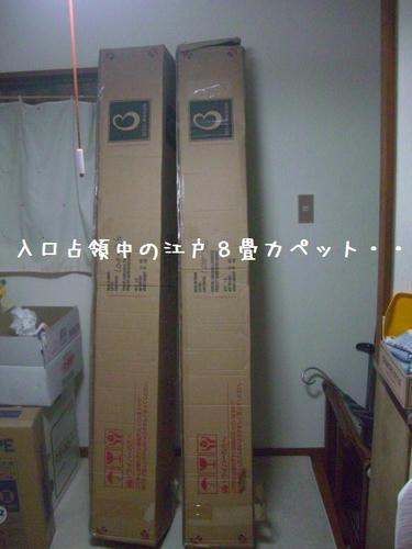 CIMG8454.JPG