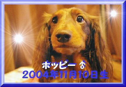 71737c4c.jpg