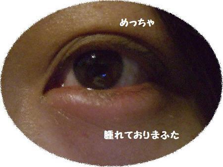CIMG2629.jpg