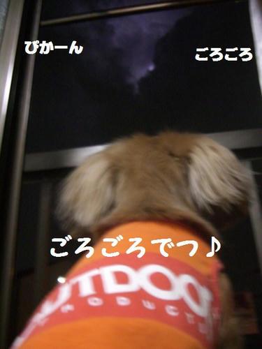 CIMG9267.JPG