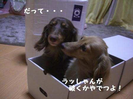 03a98548.JPG