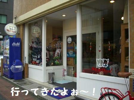 CIMG4602.JPG