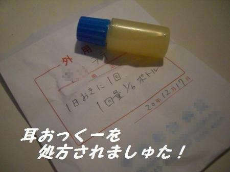 CIMG6813.JPG