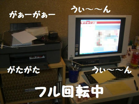 CIMG7205.JPG