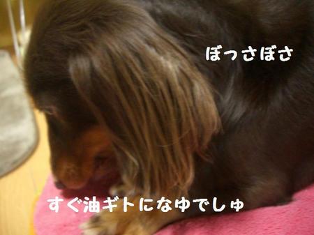 CIMG8369.JPG
