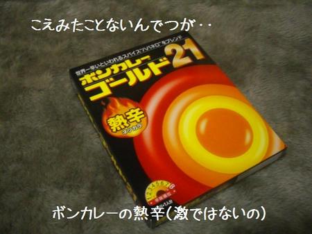 CIMG1051.JPG