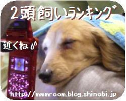 CIMG1627.jpg