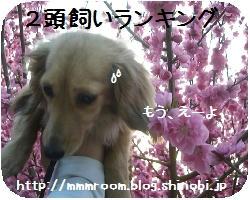 123d6792.JPG