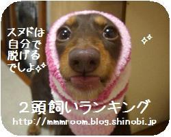 CIMG2597.jpg