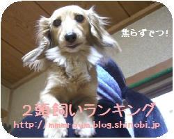 CIMG3184.JPG