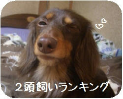 CIMG4276.JPG