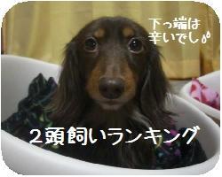 CIMG5163.JPG