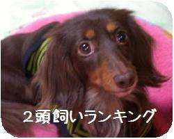 CIMG7744.JPG