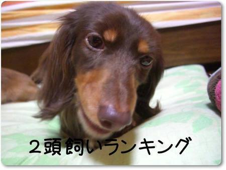 CIMG8224.JPG