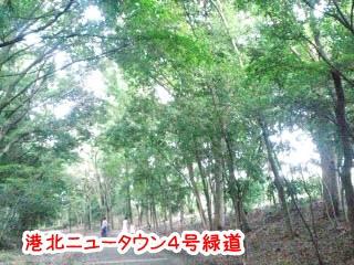 CA3C00040001.jpg