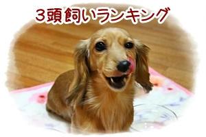 IMG_8143.jpg