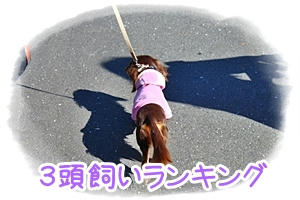 IMG_8424.jpg