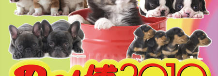 pet_makuhari_top_02.jpg