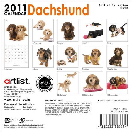 2011dax-mini2.jpg