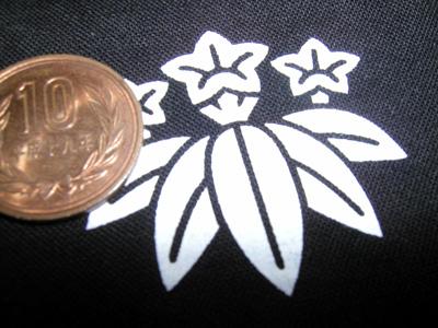笹竜胆(けっこう小さい)
