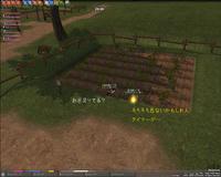 mabinogi_2009_02_24_005.jpg