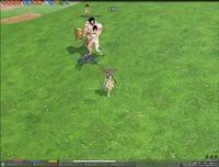 mabinogi_2009_04_19_002.jpg