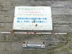 221110-biwako04.jpg