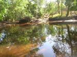 creek01.jpg
