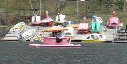 GW旅行,栃木県,ゴールデンウィーク,男体山,中禅寺湖,日光,ティーカップボート,白鳥ボート
