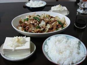 今日の晩御飯,回鍋肉,ホイコウロウ,冷奴,冷ややっこ,献立,夕食のメニュー,自宅でご飯